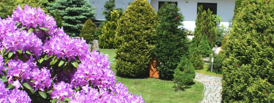 Psycholog Jablonec - Lázně Jablonec, letní zahrada, místo vhodné pro relaxaci a odpočinek